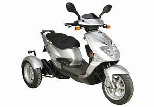 Elektro Trike Scooter : pgo tr3 trike dreirad roller scooter 45 km h silber ~ Jslefanu.com Haus und Dekorationen
