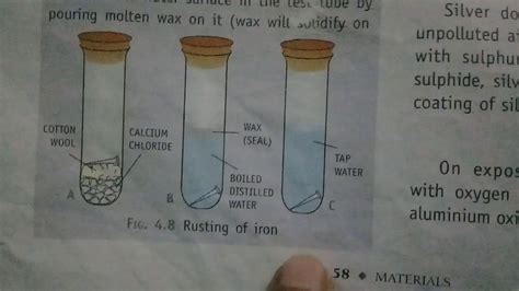 rusting experiment iron