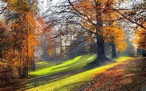 Kostenlose Bilder Herbst : hd herbst hintergrundbilder hd hintergrundbilder ~ Yasmunasinghe.com Haus und Dekorationen