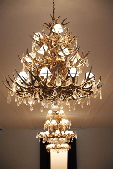 ralph chandelier ralph antler chandelier lighting
