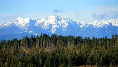 Top Rated Hiking Trails Olympic National Park