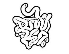 coloriage de intestin grele pour colorier With lcrschematicpng