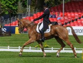 Andrew Nicholson and Nereo Lead Badminton Dressage at ...
