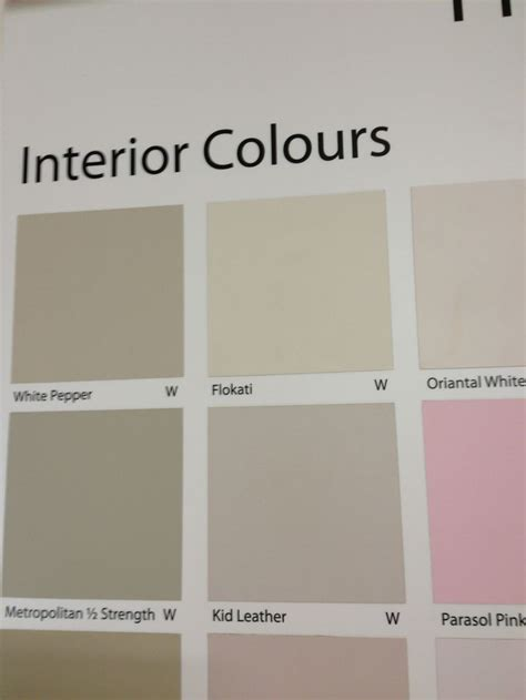wattyl kid leather colour swatches colorful interiors