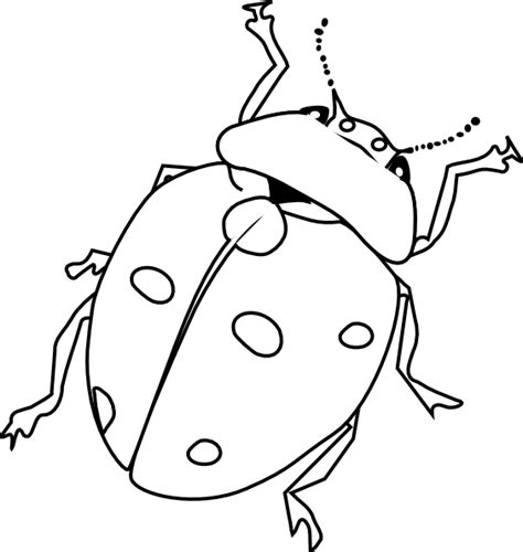 insect coloring pages  coloring pages  print