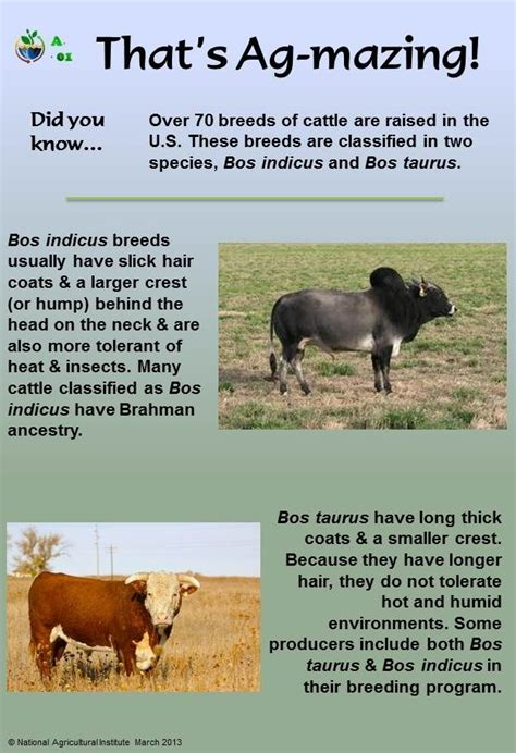 agriculture   Animal science, Farm facts, Fun facts about ...