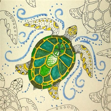 what color is a turtle back to color school the coloring wheel