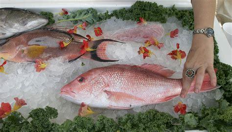florida seafood     guide    seafood