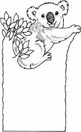 Koala Coloring Pages Bear Koalas Tree Printable Sad Drawing Bears Colouring Cartoon Animal sketch template