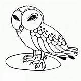 Coloring Owl Owls Printable Sheets Wise Clipart Birds Babies Printables sketch template