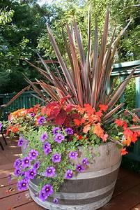 container, garden, tips