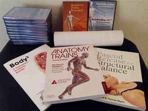 Anatomy Trains For Manual Therapy