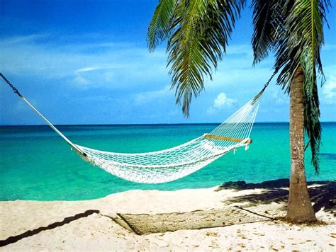 Hammock Photos by Treasure Cove With This That Enjoy Beaches With