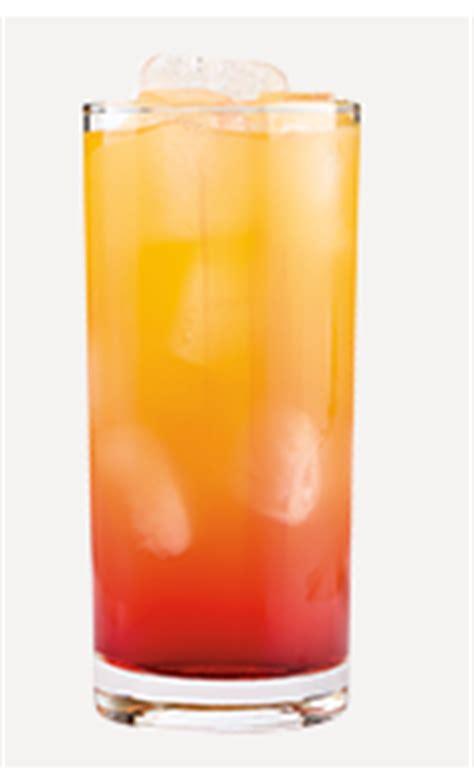 orange sunrise cocktail recipe  picture