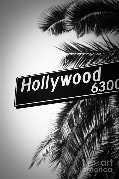 black  white hollywood street sign photograph  paul