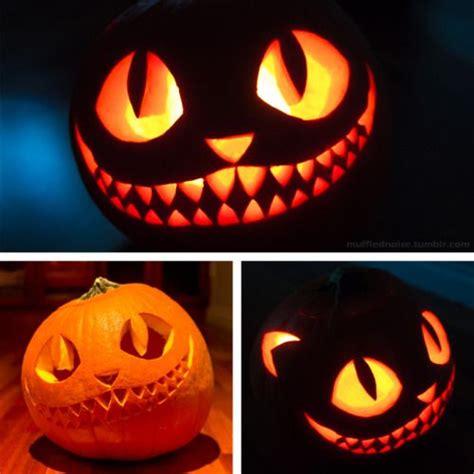 cat pumpkin ideas 25 best ideas about pumpkin carvings on pinterest pumkin carving halloween pumpkin carvings