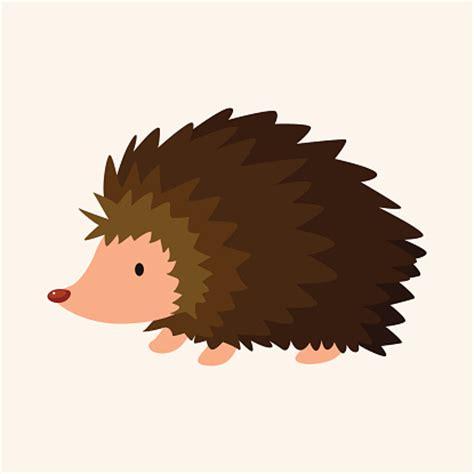 Hedgehog Clipart Hedgehog Pictures Clipart Best