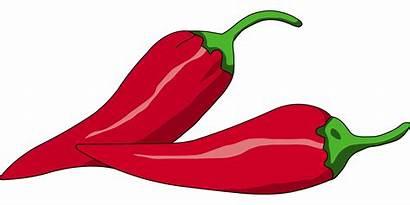Chili Pepper Transparent Cabai Clipart Vegetable Jalapeno