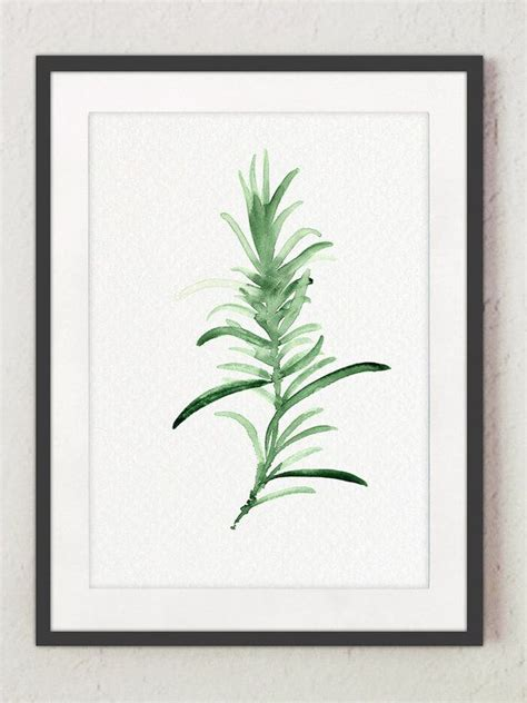 Rosemary Herb Diagram by Rosemary Watercolor Painting Green Kitchen Wall Print