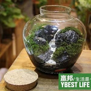 Gros Vase En Verre : achetez en gros verre sph re vase en ligne des grossistes verre sph re vase chinois ~ Melissatoandfro.com Idées de Décoration