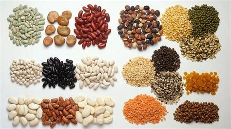 alimento vegano prote 237 nas y veganismo amino 225 cidos esenciales de origen
