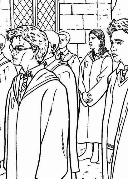 Potter Harry Coloring Phoenix Order Netart