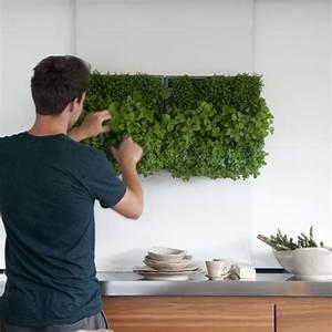 Mur Végétal Intérieur Ikea : au printemps la maison se met au vert the blog d co ~ Dailycaller-alerts.com Idées de Décoration