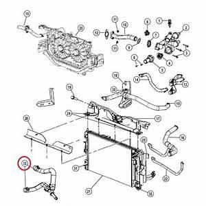Durite De Radiateur : 5162004aa durite de radiateur pour jeep compass 2 0l crd sur pieces ~ Gottalentnigeria.com Avis de Voitures