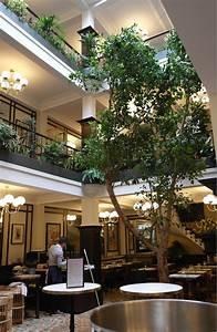 Arbre D Intérieur : arbre deco interieur original un arbre en plein milieu du salon arbre with arbre deco interieur ~ Preciouscoupons.com Idées de Décoration