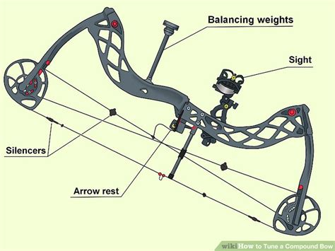 How To Tune A Compound Bow 13 Steps (with Pictures) Wikihow