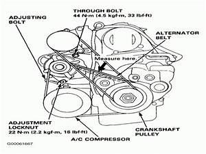 1999 Honda Accord Serpentine Belt Routing And Timing Belt Diagrams