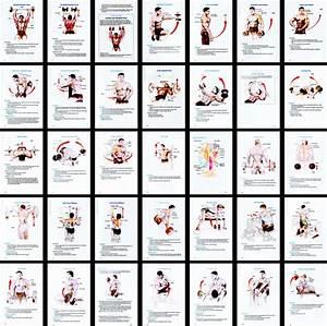 Strong Body Guide 12 Week Home Workout Program Pdf Workout Plans Pdf
