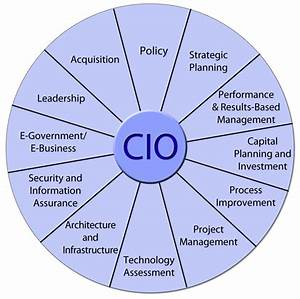 Evolution of the Chief Information Technology Officer
