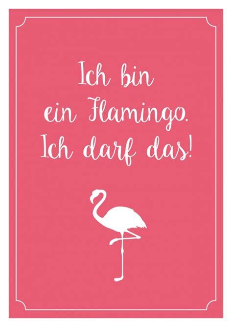ich bin ein flamingo ich darf das statements echte