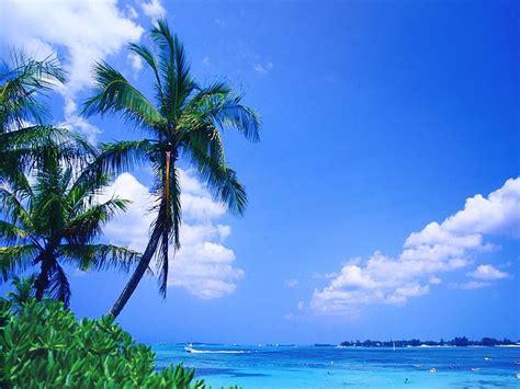 tropical beach wallpaper   desktop wallpapers