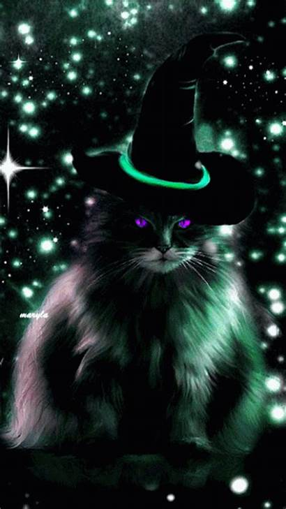 Halloween Cat Witch Happy Animated Gifs Kitty