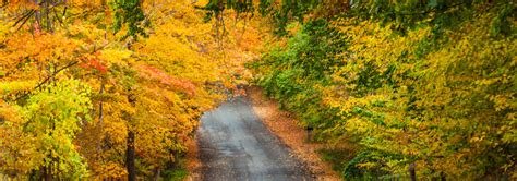 Traverse City Boat Tours by Traverse City Area Fall Color Fall Color Tours In Michigan
