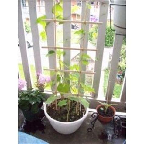 Diy Potted Plant Trellis  Garden Pinterest