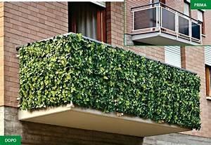 Best Siepe In Vaso Per Terrazzo Photos - Idee Arredamento Casa ...