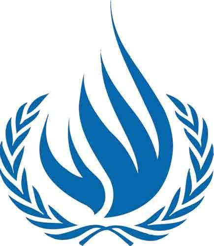 bureau des contributions appel à contribucions du haut commissariat des nations