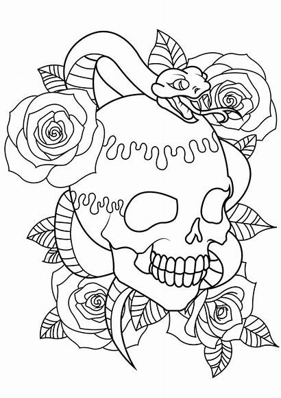 Coloring Tattoo Adults Skull