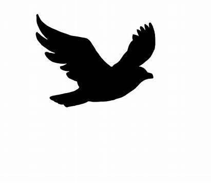 Silhouette Flying Birds Bird Flight Clipart Cliparts