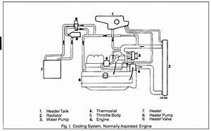 Jaguar X Type Hose Diagram  Jaguar  Free Engine Image For