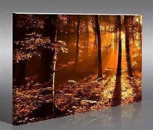 Ebay Auf Rechnung Kaufen : bilder auf leinwand kaufen bilder set 2 teilig mit baum in 3d optik auf leinwand abstrakte ~ Themetempest.com Abrechnung