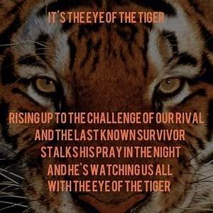 Eye of The Tige... Survivor Band Quotes
