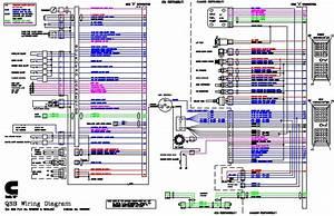 Mins Isl Fuel System Diagram  Mins  Free Engine Image For