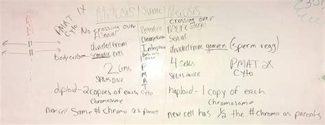 biology lhs  dormans science class