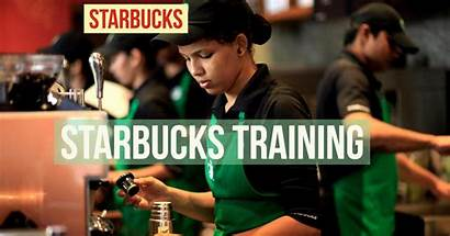 Starbucks Training Learning Employee System Webdevstudios Management