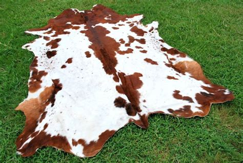 Cheap Cowhide by 5 Cheap Cowhide Rugs You Should Check Out Cowhide Rug Tips