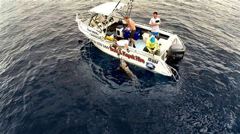 Boat Service Exmouth by Boat Hire Exmouth 4 X 6m Hire Boat Call Aspa 0438230269